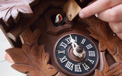 De koekoeksklok die je liever niet in huis haalt